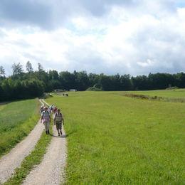 Altmühltal Panoramaweg (31)