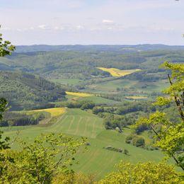 Ausblick Boyneburg