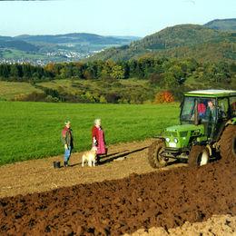 Die Höhen des Westerwald erwandern - ungeführte Wanderreise - landwirtschaft