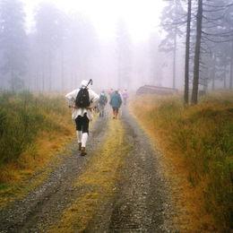 Erlebnisreiche Wanderung durch das Erzgebirge - nebelwanderung
