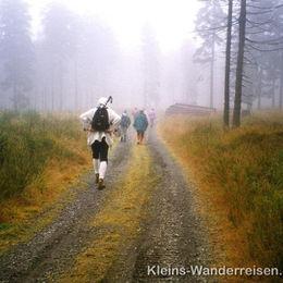 Erzgebirge Nebelwanderung