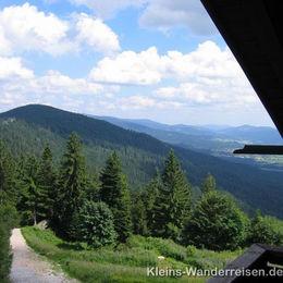 Goldsteig, Blick von der Kötztinger Hütte
