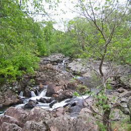 Individuelle Wanderreise durch die schottischen Lowland und Highlands - West Highland Way - 0338