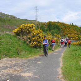 Individuelle Wanderreise durch die schottischen Lowland und Highlands - West Highland Way - 0343