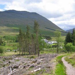 Individuelle Wanderreise durch die schottischen Lowland und Highlands - West Highland Way - 0461