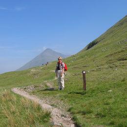 Individuelle Wanderreise durch die schottischen Lowland und Highlands - West Highland Way - westhighlandway-linde