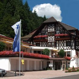 Black Forest Bad Peterstal-Griesbach