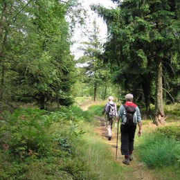 Oberlausitzer Bergweg Grenzweg Lausche