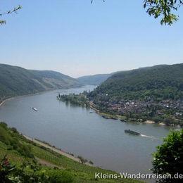 Rheinsteig, Aussicht von Georgsruh