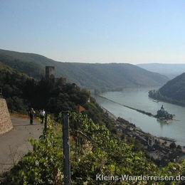 Rheinsteig, Pfalz bei Kaub