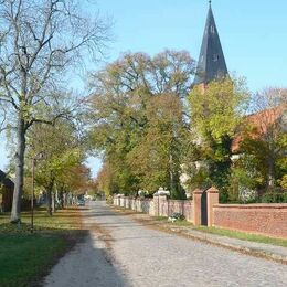Ringenwalde