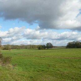 Landschaft Schorfheide