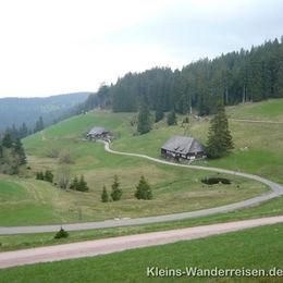 Westwag Schwarzwald Landschaft
