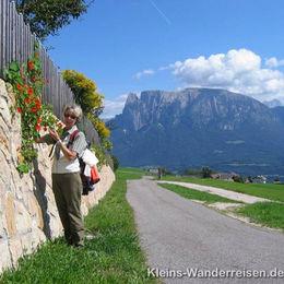 Südtirol Blick zum Schlern