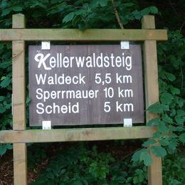 Ungeführte Wanderung im Natur- und Nationalpark Kellerwald-Edersee - L1010192