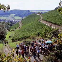 Wandern im Naturpark Soonwald-Nahe ohne Gepäck auf dem Weinwanderweg Rhein-Nahe - 16