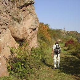 Wandern im Naturpark Soonwald-Nahe ohne Gepäck auf dem Weinwanderweg Rhein-Nahe - 5