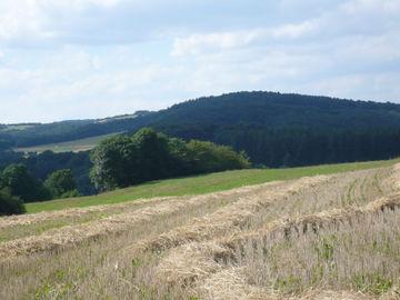Genussvolles Wandern im waldreichen Naturpark Lahn-Dill-Bergland -  (2)