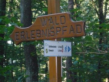 Genussvolles Wandern im waldreichen Naturpark Lahn-Dill-Bergland -  (9)