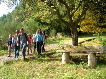 Genussvolles Wandern im waldreichen Naturpark Lahn-Dill-Bergland - wanderer (4)
