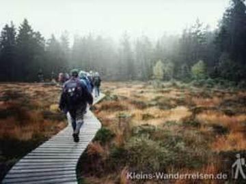 Harzer-Hexen-Stieg, Wanderer im Moor