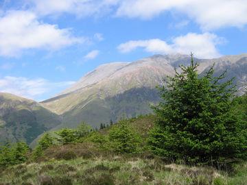 Individuelle Wanderreise durch die schottischen Lowland und Highlands - West Highland Way - 0362