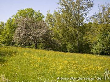 Veldenz-Wanderweg