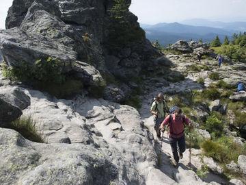 Ungeführte Wanderreise im Bayrischen und Oberfpälzer Wald - Goldsteig - _6816