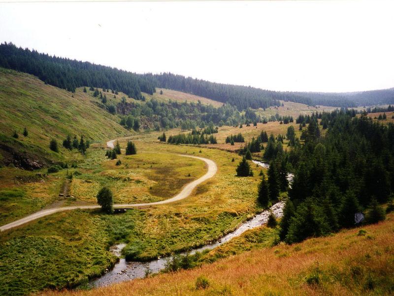 Erlebnisreiche Wanderung durch das Erzgebirge - schwarzwassertal2