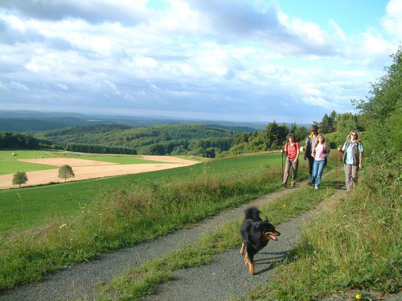 Genussvolles Wandern im waldreichen Naturpark Lahn-Dill-Bergland - schönscheid 2