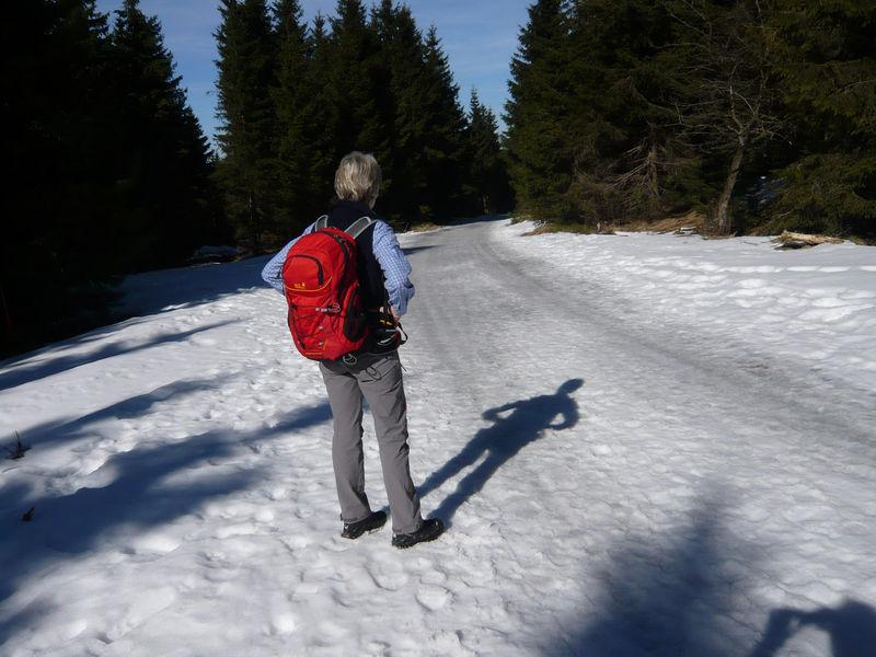 Rennsteig - wandern ohne Gepäck auf einem der beliebtesten Wanderwege in Deutschland - L1020037