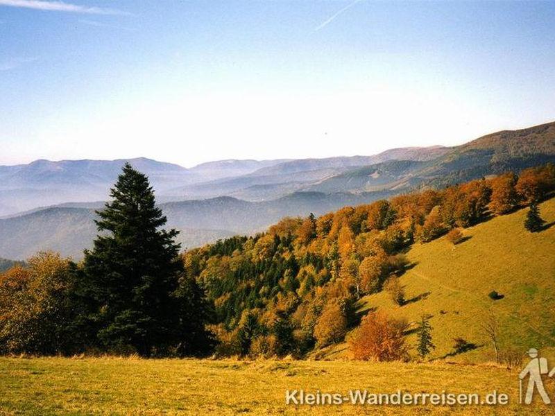 Vogesen Panoramablick im Herbst