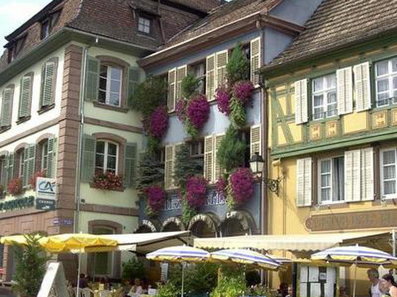 Vogesen in Ribeauville